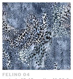 Felino 04